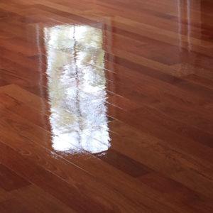 Gloss Finish for Hardwood Floors